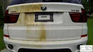 Tar.X CaPro - BMW X5 - очиститель битума, клея, смолы, дорожной разметки, обезжириватель.