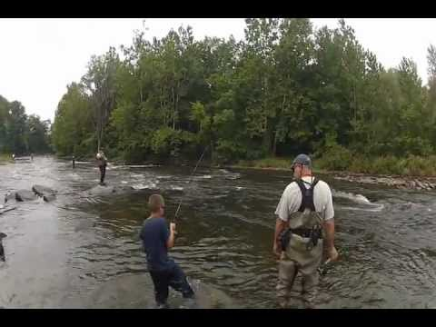 Salmon river run 2012 pulaski new york filmed with go pro for Salmon river ny fishing regulations