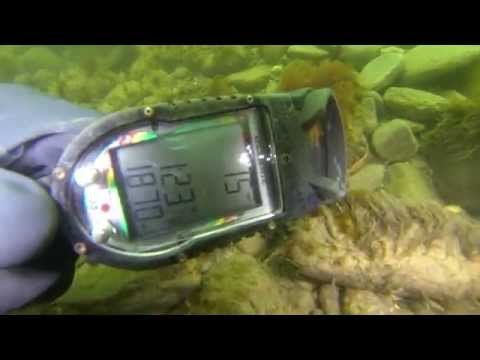 PENFIELD LIGHTHOUSE DIVE – SQUALUS MARINE DIVERS