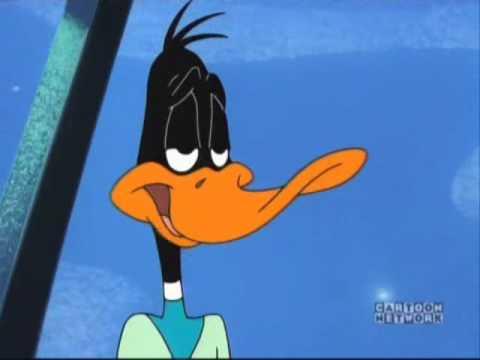 duck dodgers samurai quack latino dating