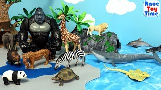 Lots of Wild Animals Toys Transported to an Island - Learn Animal Names