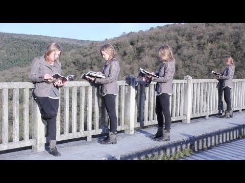 Tutorial Adobe Premiere Pro CS6 Clonar Personas (Clones - Clonación)