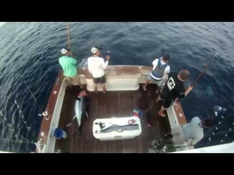 New Jersey Big Eye Tuna 2014 Jersey Nutz Charters