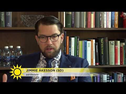 """Jimmie Åkesson: """"Jag har inte haft möjligheten att prata med henne ännu"""" - Nyhetsmorgon (T"""