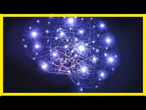 Neue Abwehrstrategie gegen Alzheimer-Erkrankung entdeckt