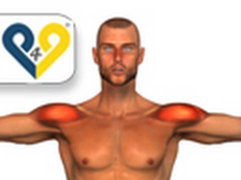 Dumbbell Lateral Raise exercise Image 1