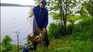 Рыбалка на Леща и Крупную Плотву | Бешеный Клев Летом 2017 на Фидер