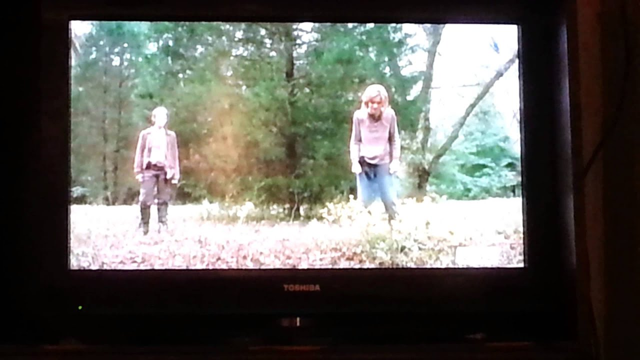 The Walking Dead Just Look At The Flowers Lizzie