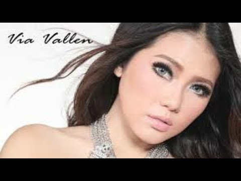 Via Vallen Move on Cover NDX A.K.A
