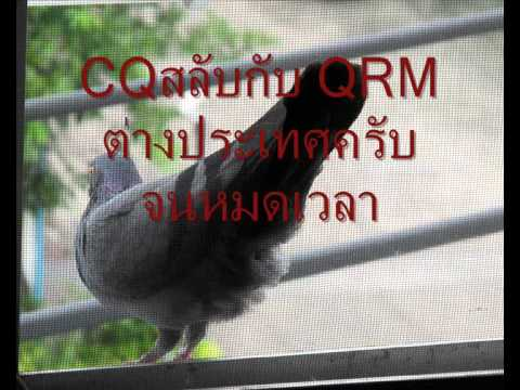 AO-51 FM 0841Z 1541น THAI+OUT QRM 145.875MHZ-145.900MHZ.wmv