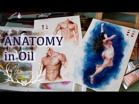 Study anatomy online free