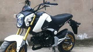 Fashion Monkey Bike Motorcycle Vedio