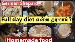 German shepherds diet plan | pet tamil vlog | homemade  food for dog| pet care tips| #mahabepositive