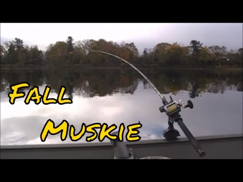 Fall Muskie Fishing on the Saint John River, Fredericton, New Brunswick