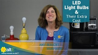 Are LED Light Bulbs really worth the extra cost?