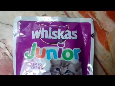 Whiskas Jr. - Cat Food Review