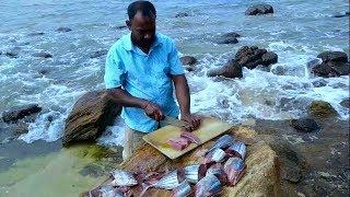 Tuna Fish Salt Curry (AmbuluMalu Sri lankan Style) for 50 People - Prepared By Meesai Bro