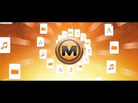 The Megaupload Song