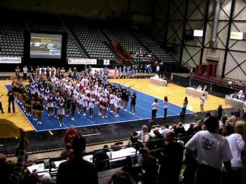 Michigan State Competitive Cheer Finals--2009--Ovid-Elsie High School, Division 3, Part 1