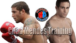 👊Chad Mendes Training 2015