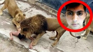 Man Fed Himself To Lions Thinking He's God's Prophet