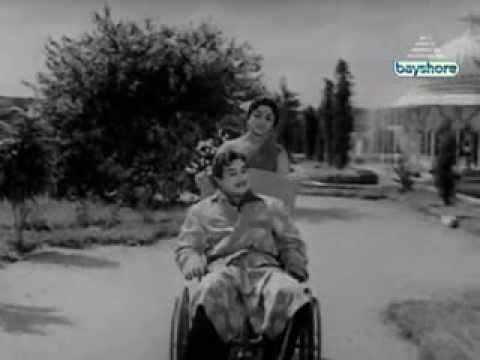 Ponnai Virumbum Bhoomiyile - Sivaji Ganesan Tamil Movie Songs - Aalayamani Songs video