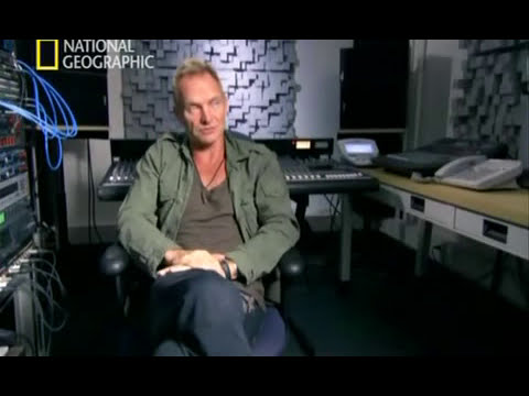 Cerebro Musical. Sting