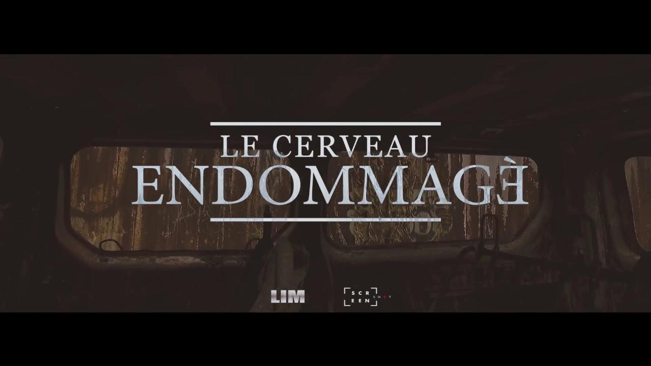 LIM CLIP LE CERVEAU ENDOMMAGE
