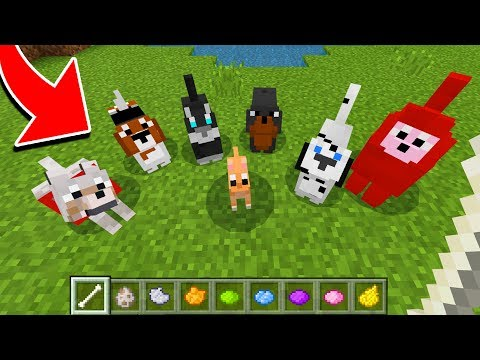 How to Spawn NEW WOLVES in Minecraft TUTORIAL! (Pocket Edition, Xbox, PC)