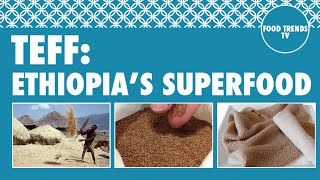 Teff: Ethiopia's Superfood - Food Trends TV