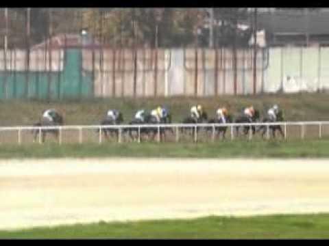 """Trka """"Trka Grada Beograda"""" - Beograd - 17. oktobar 2010 god."""