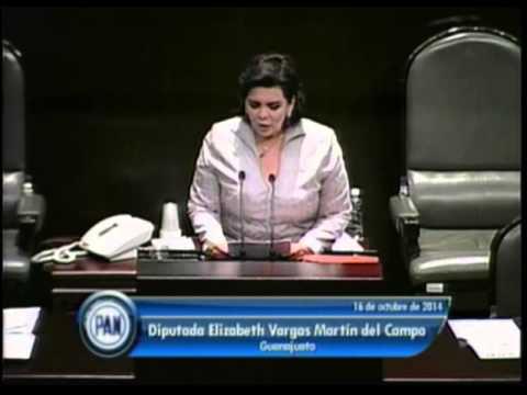 Dip. Elizabeth Vargas (PAN) - Ley de Ingresos 2015 (Reservas)