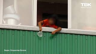 Ребёнок чуть не сбросил кошку с балкона в Красноярске