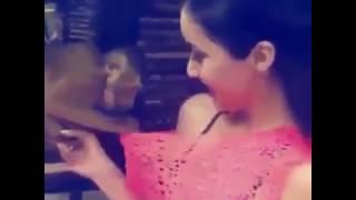 [Uncensored] Monkey Revealing Shraddha Kapoor Boobs | Must Watch