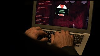 The internet is 'incredibly vulnerable' to cyber crime | IG
