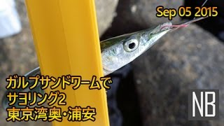東京湾奥浦安テトラ帯サヨリング[Halfbeak Fishing with Softbait in Urayasu TokyoBay]Sep 05 2015