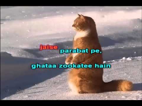 Video Karaoke of Dil Kya Kare from Hyderabad Karaoke Club -...