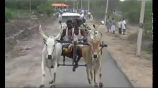 Mattu Vandi Panthayam  Rekla Race  Mudukulathur