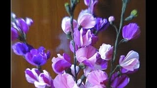 How to make Paper flowers Stocks / Matthiola incana (Flower # 4)