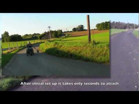 TEAM HYBRID HANDCYCLES Viper Power Cycle Walking the dog