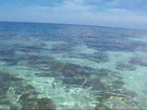 6. Pulau Rani.wmv