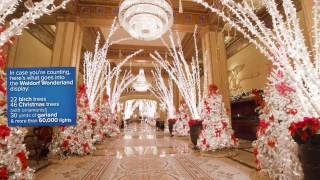 A Winter Wonderland at The Roosevelt New Orleans