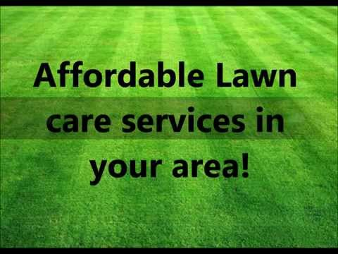 Professional Lawn Care Services - Commercial & Residential Lawn Company in MS