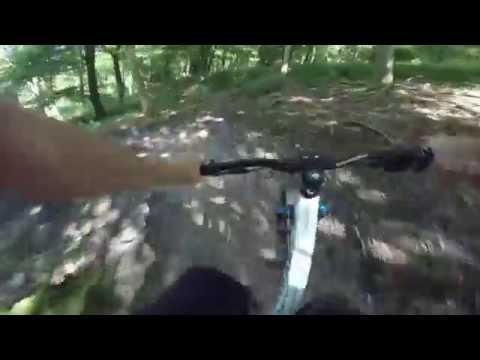 Queen Elizabeth Country Park Mountain Bike course