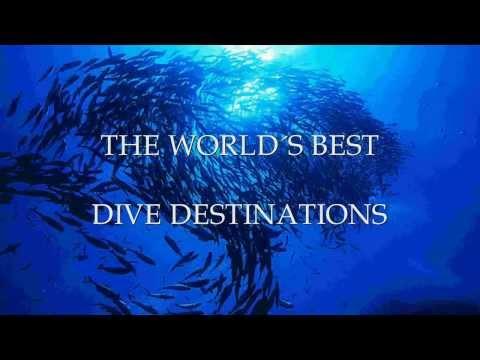 The World´s Best Dive Destination