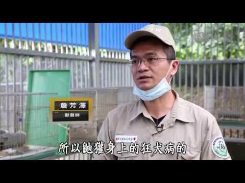 台灣-小人物大英雄-20141013 集集救急