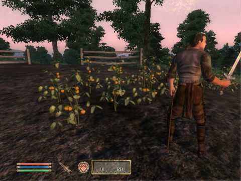 Oblivion Quest: The Killing Field.