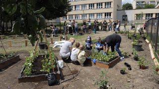 Ogrody przy placówkach edukacyjnych