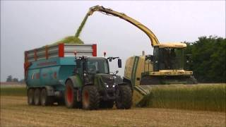Triticale 2015: Krone Big X 700, Fendt 514, 511, 412, Arion 550, MF 5470