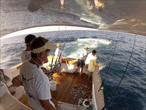 Rudee inlet fishing for virginia beach fishing for Rudee inlet fishing